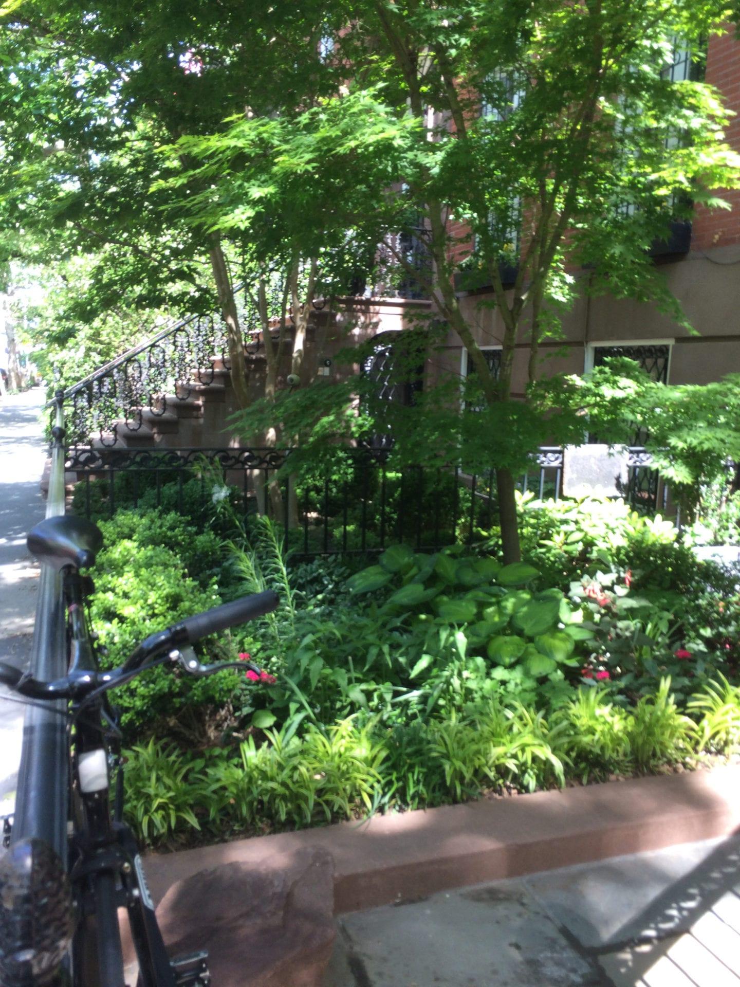 We're in a Tight Spot — Landscape Design for Small Urban ... on Small Landscape Garden Design  id=76309