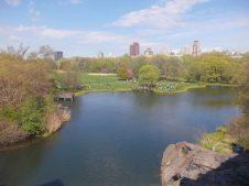 Collège Eridan Central Park