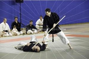 Démonstration de Kobudō au Festival des Arts Martiaux du 17ème
