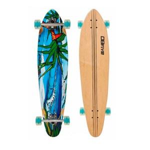 location-skate-moliets-long