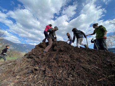 Plantation des arbres fruitiers – le tas de broyat