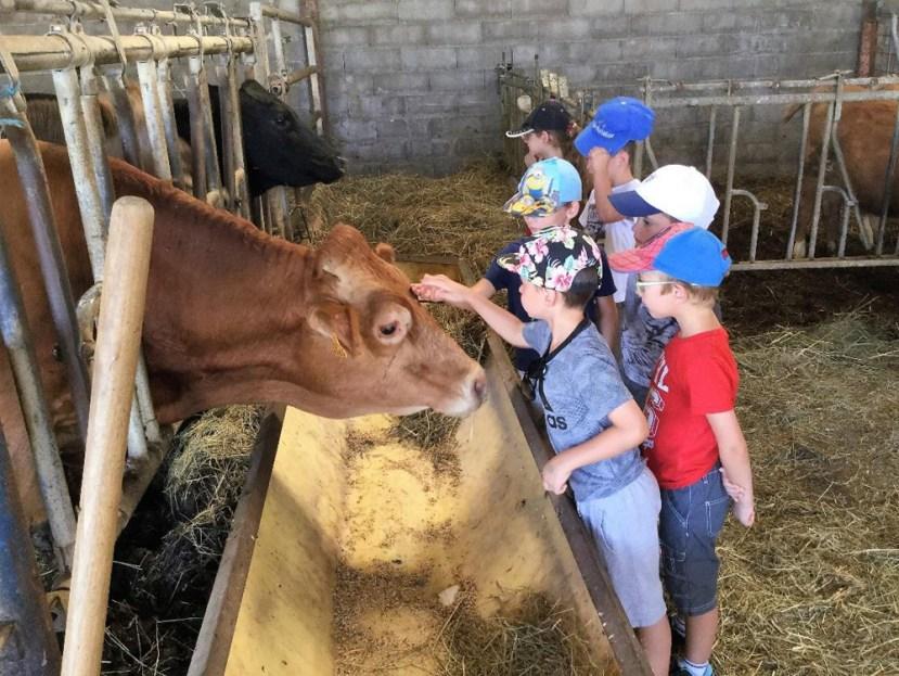 Ecole de Oytier St Oblas - Sortie scolaire à la ferme