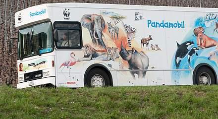 Pandamobile 2017
