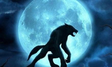 Les loups-garous existent-ils vraiment?