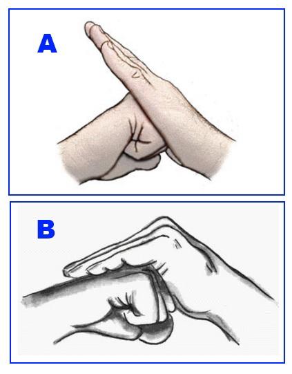 Kung Fu Signification le salut du wushu - on fait le poing #4 - ecole wuxing kung-fu