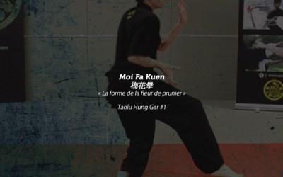 Moi Fa Kuen – Tao Lu de Hung gar #1