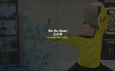 Wu Bu Quan – Tao Lu fondamental