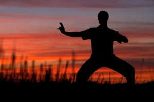 Ecole-Wuxing-Stage-Formation-Kung-Fu-Wushu-Qi-Gong-Self-Defense