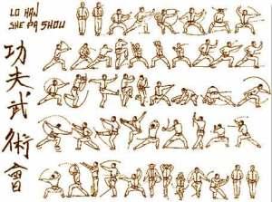 Taolu, Tao, Forme - On fait le poing #7 - Luo Han Shaolin
