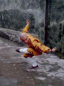 dong-wu-quan-yong-zhao-eagle-liste-taolu-ecole-wuxing-kung-fu