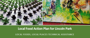 Local Food Action Plan for Lincoln Park