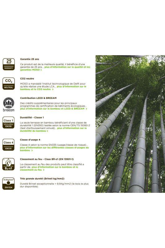 lame terrasse bambou moso x treme bo