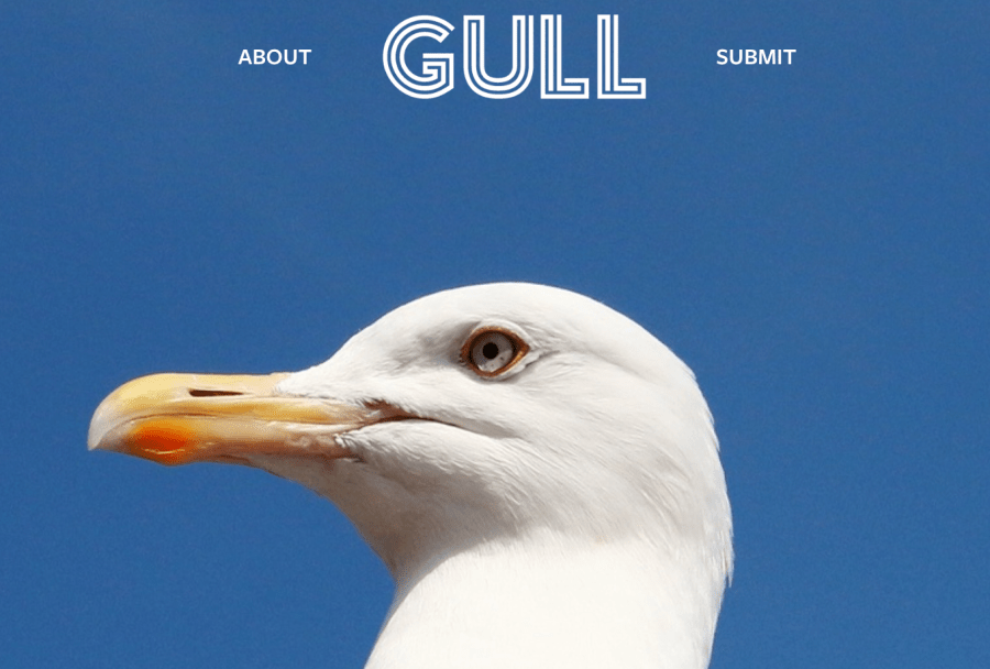 Gull Literary Journal