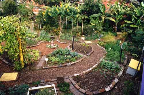 what is permaculture? - ecoliving design on Backyard Permaculture Design id=87810