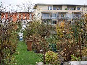 jardin-sans-frontie_re1