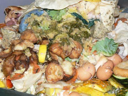 cibo in discarica