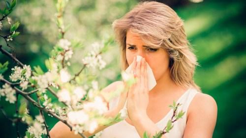 la contaminación ambiental empeora las alergias