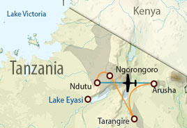 Tanzania wildlife safari