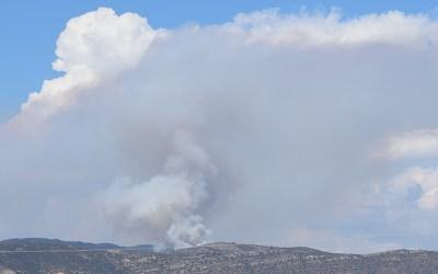 Incendio Forestal en el Rodeno-Domdeño.