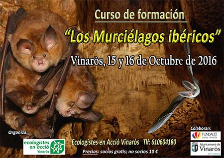 Formación: Los murciélagos ibéricos