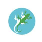 Lizard Landscape Design and Ecology