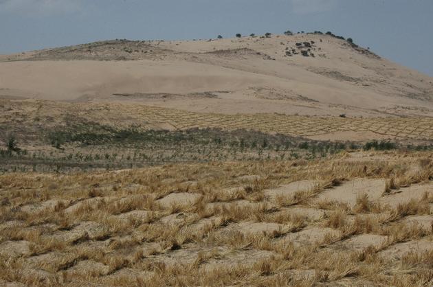 desertification-mena