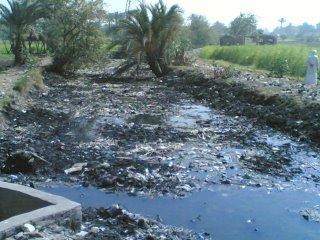 waterproblemsegypt