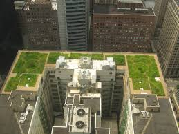 green-roof-arabic