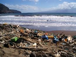 marine-wastes-middle-east