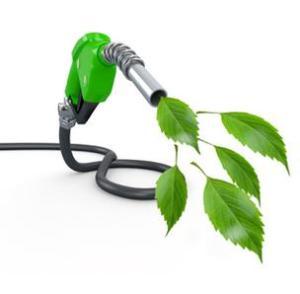 biofuels-jordan
