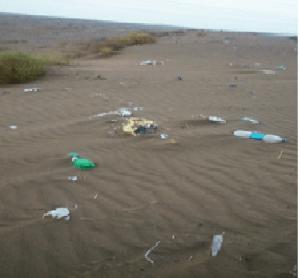 trash-desert