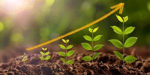 greeninvestment