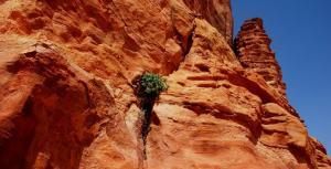 sustainable-development-jordan