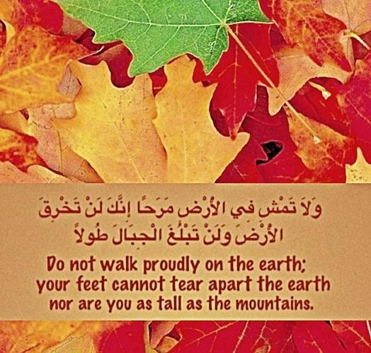 fe6ff098e3a57 نهى رسول الله محمد – صلى الله عليه و سلم – بوضوح عن تدمير الأشجار والمحاصيل  الزراعية حتى خلال أوقات الحرب، ما دام وجودها لا يزال مفيدا للعدو.