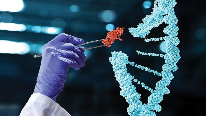 GMObiosafety