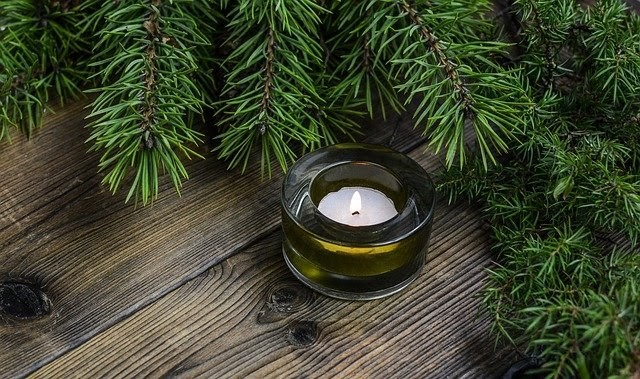 plant based candles as gift