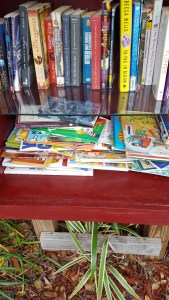 Children's reading material on low shelf