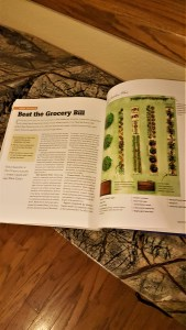 Description of garden reducing grocery bill