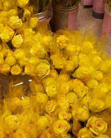 Dozens of Yellow roses