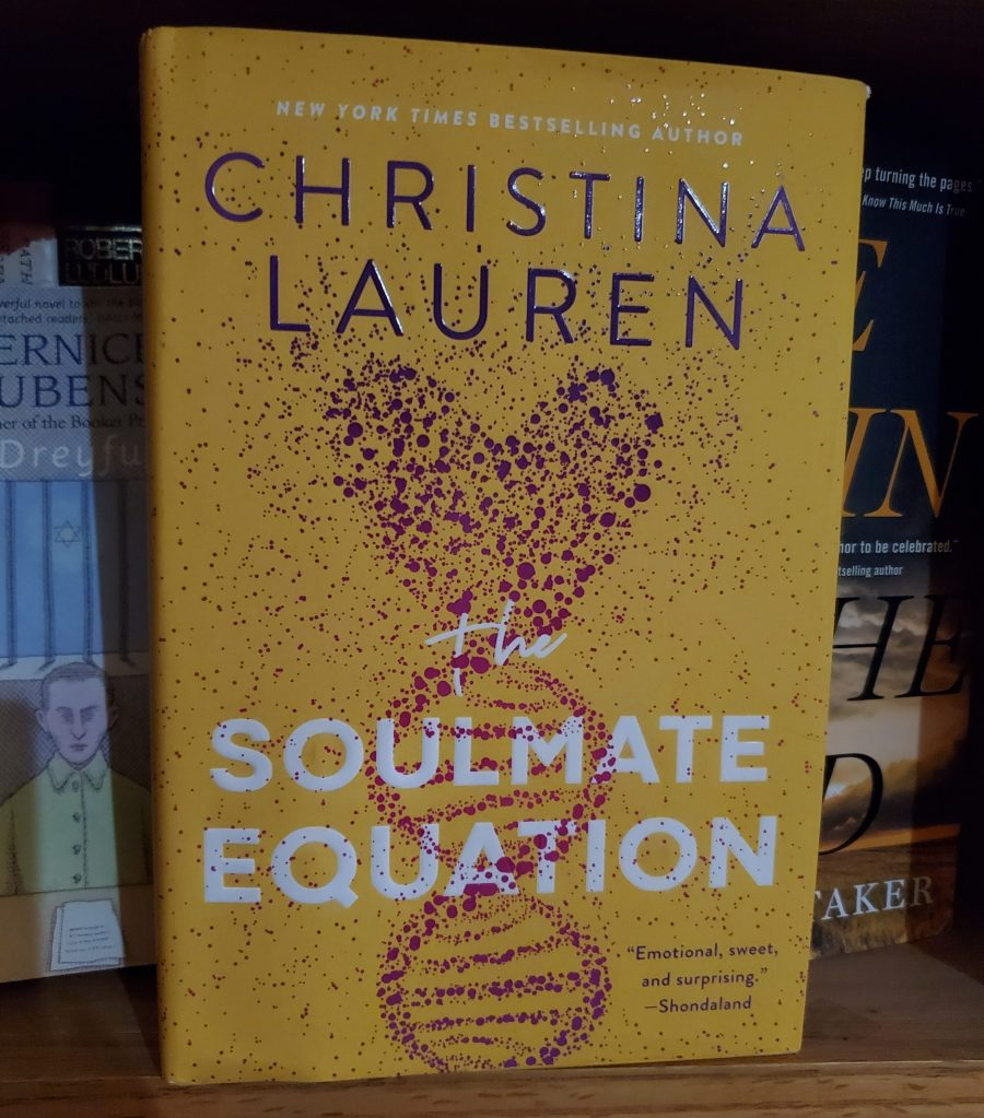 Cover of Soulmate Equation