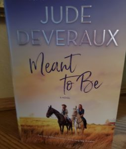 Book Cover of novel Meant to Be