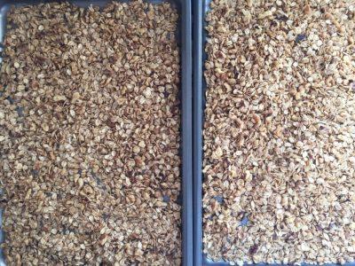 Healthy Homemade Granola Raw
