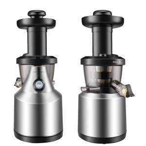 10. Flexion Cold Press Juicer Machine
