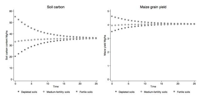 Berazneva-SoilCarbon-Figure1