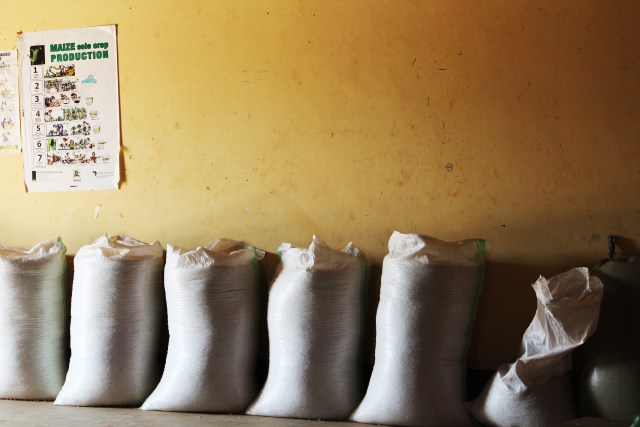 Storage bags conventionally used by Ugandan farmers. Photo credit: Mark Brennan.