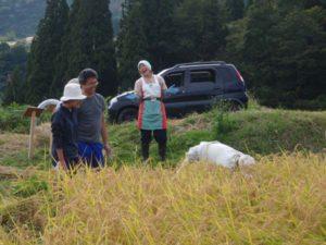 こちらはオーナーの山田さんに稲刈り指導をする通りがかりの村人。「腰の構えが違う!」などとにぎやかな指導でした。