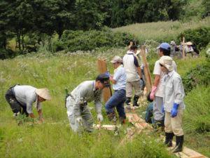 木道作りの様子。板を運ぶ人、木を切る人、打ち付ける人と役割を分けてスムーズに進みました。