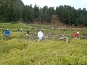 水害にあった田んぼでの作業風景。背景には山崩れの跡が見えます。