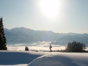 朝日が差し、雪がキラキラと光っていました。里には白い霧が広がっているようでした。