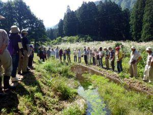 生物多様性保全地域では、池の周辺などで生き物を観察してもらいました